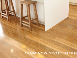 Evolution Gloss NSW Spotted Gum