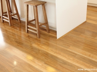 Evolution Gloss NSW Spotted_Gum