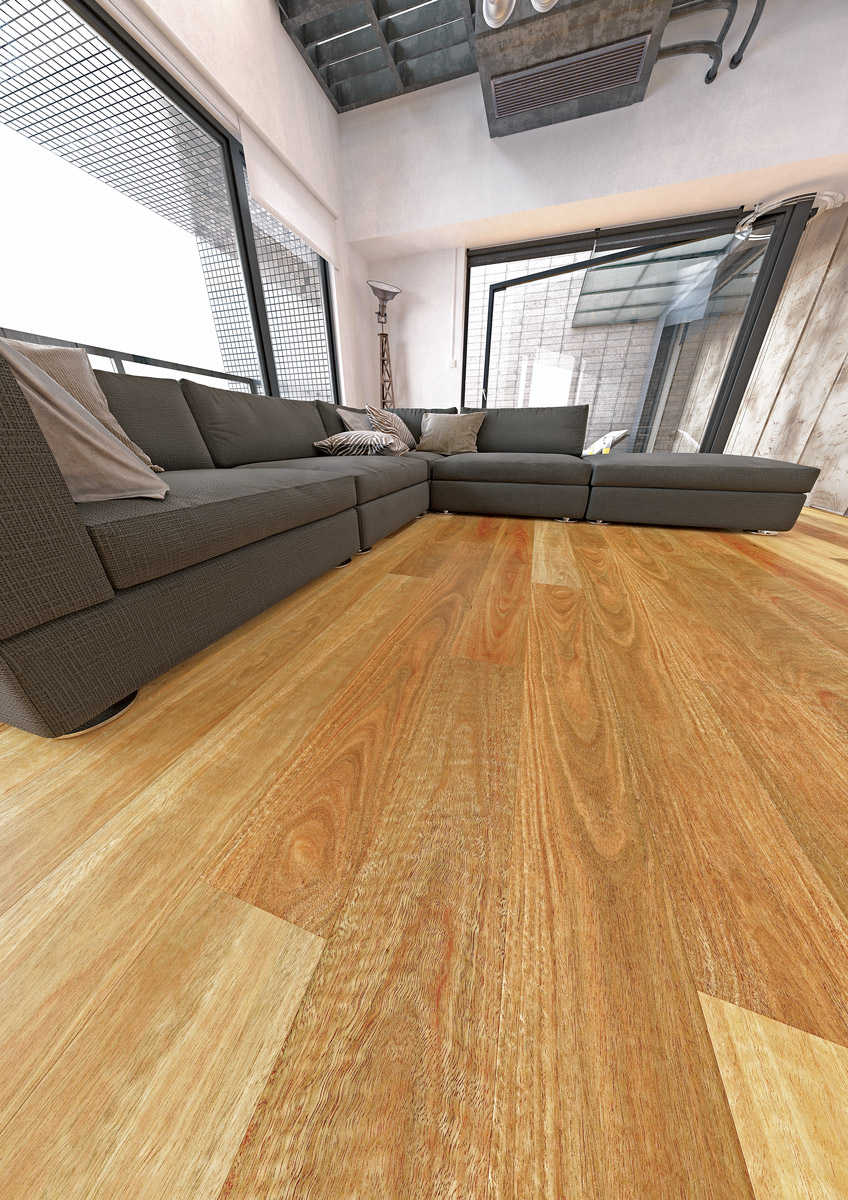 Abode Prime NSW Spotted Gum
