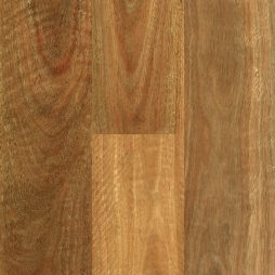 Abode Prime NSW Spotted Gum Swatch