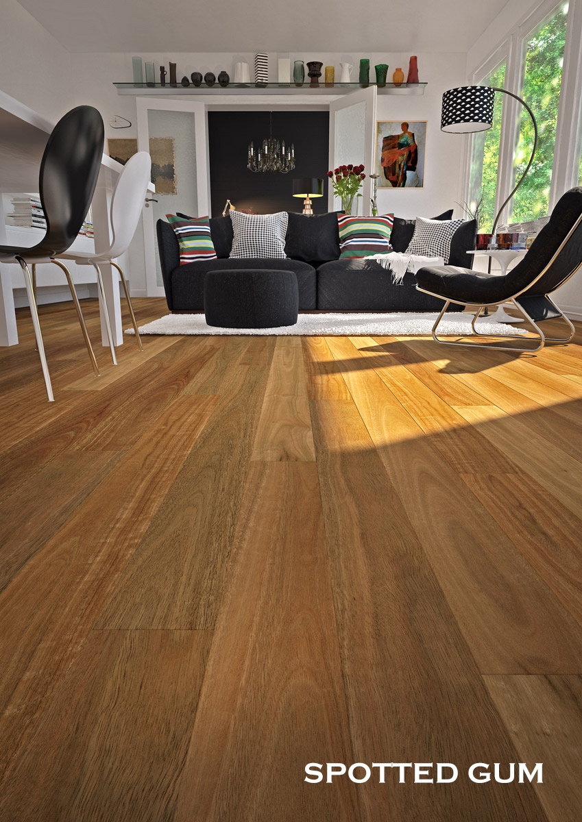 Plantino Native Elemental Spotted Gum