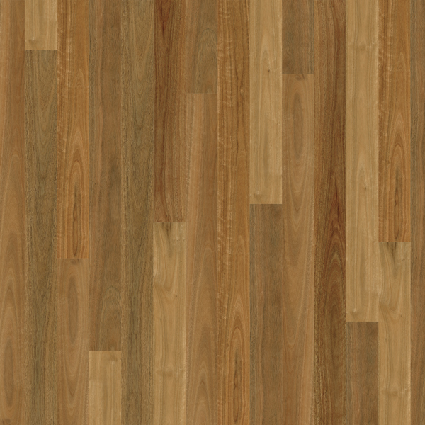 Plantino Native Spotted Gum Swatch