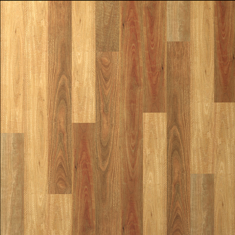 Nsw Spotted Gum Proline Floors Australia