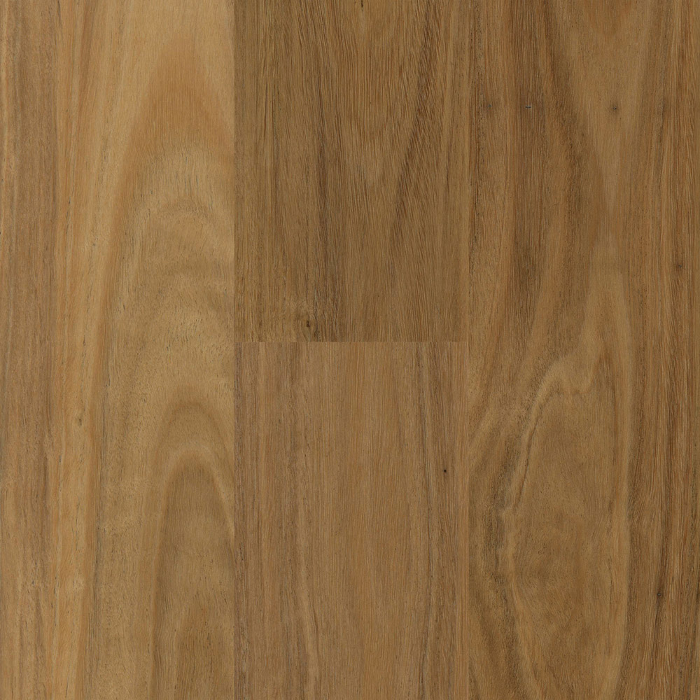 Coastal Blackbutt Proline Floors Australia