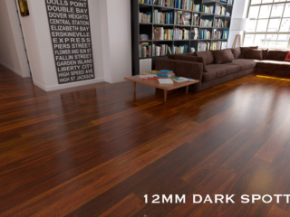 Evolution Gloss Dark Spotted Gum