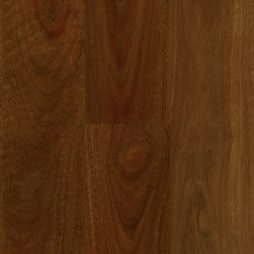 Abode Prime QLD Spotted Gum Swatch