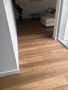 Rigid Plank Blackbutt