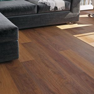 Rigid Plank Northern Spotted Gum