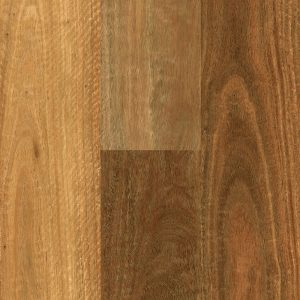 Rigid Plank Southern Spotted Gum Swatch