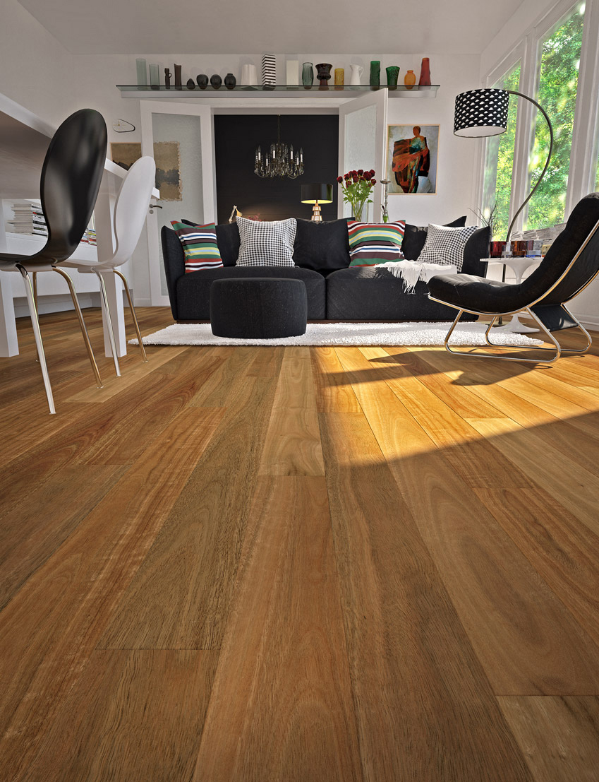 Timber Flooring | Plantino | Spotted Gum
