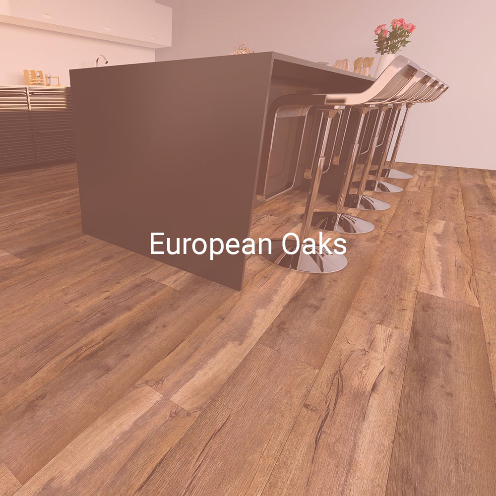 browse European oaks